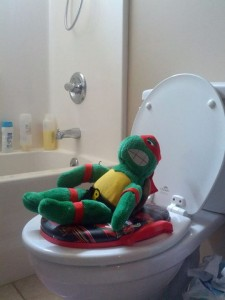 potty_training_turtle